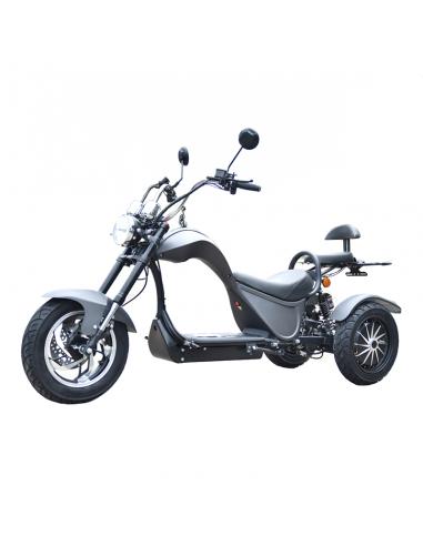 Triciclo eléctrico Citycoco S3 4000W/60V/24/Ah